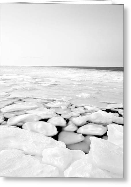 Winter In Maine Greeting Cards - North East Ice Greeting Card by David Butler