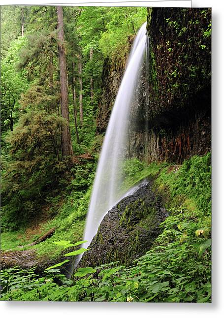 North Falls, Silver Falls State Park Greeting Card by Michel Hersen
