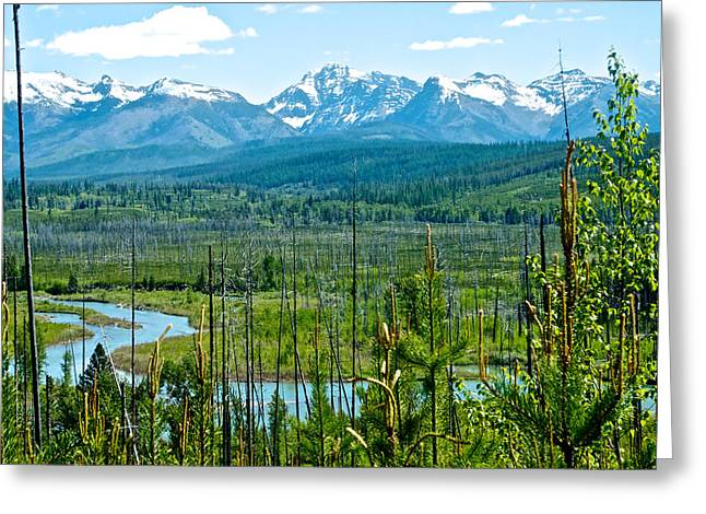West Fork Digital Greeting Cards - North Fork of Flathead River and Mountains on West Side of Glacier NP-MT Greeting Card by Ruth Hager