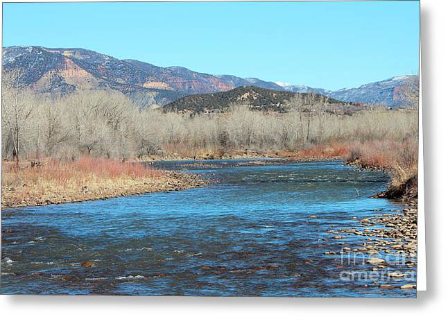 North Fork Greeting Cards - North Fork Of The Gunnison  CO Greeting Card by Dale Jackson