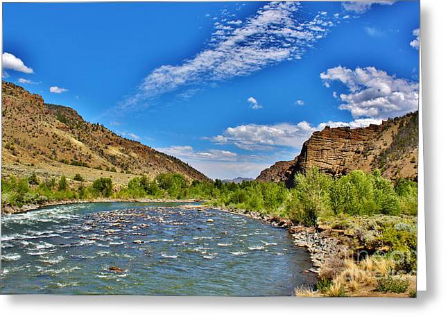 Greater Yellowstone Ecosystem Greeting Cards - North Fork of the Shoshone River Greeting Card by Janice Rae Pariza