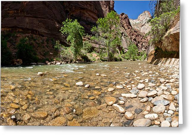 North Fork Of The Virgin River, Zion Greeting Card by Panoramic Images