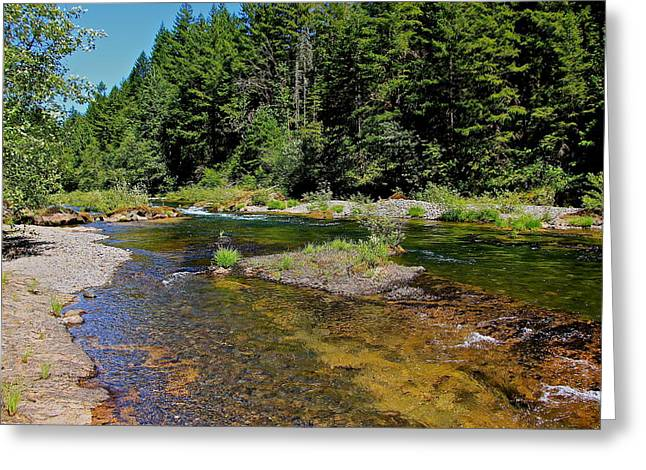 North Fork Greeting Cards - North Fork River Greeting Card by Tim Rice