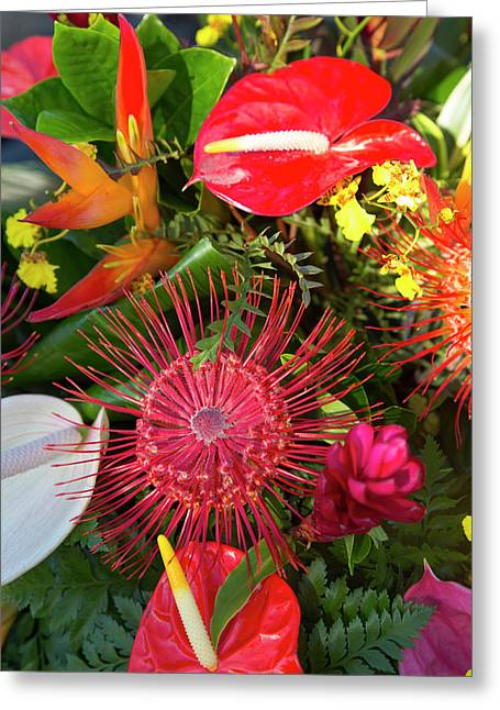 North Kohala Kamehameha Day Greeting Card by Douglas Peebles