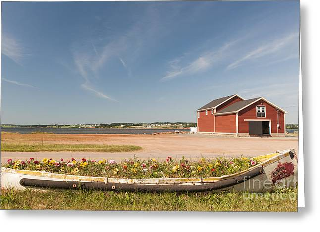 Buildings Greeting Cards - North Rustico PEI Greeting Card by Elena Elisseeva