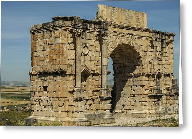 North Side Of The Arch Of Caracalla At Volubilis Greeting Card by Patricia Hofmeester