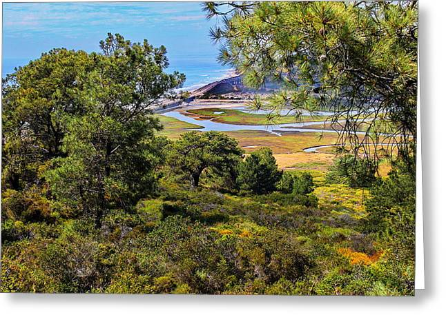North Torrey Pines Del Mar Greeting Card by Russ Harris