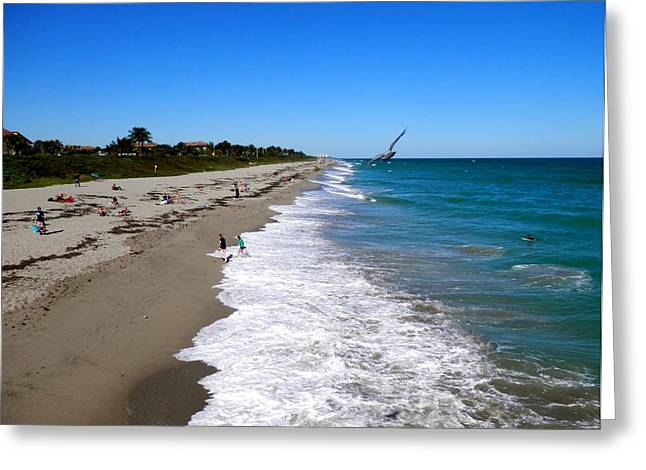 Kiteboarding Greeting Cards - North View From The Pier  Greeting Card by Joe Wyman