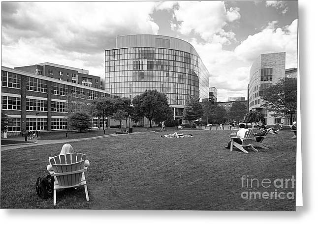 Northeastern University Greeting Cards - Northeastern University Behrakis Health Sciences Center Greeting Card by University Icons