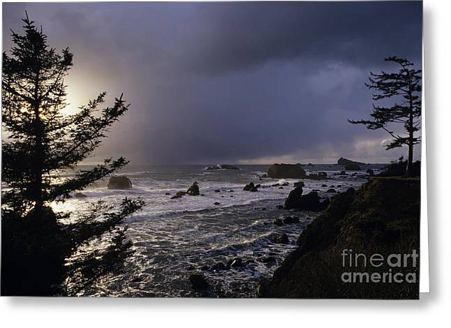 Sun Breaking Through Clouds Photographs Greeting Cards - Northern California Coastline Greeting Card by Jim Corwin