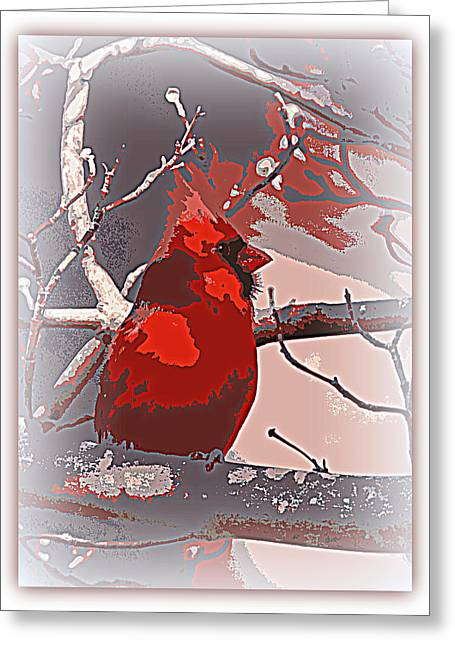 Travis Truelove Photography Greeting Cards - Northern Cardinal  104124-037 Greeting Card by Travis Truelove