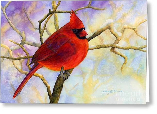 Male Northern Cardinal Greeting Cards - Northern Cardinal Greeting Card by Hailey E Herrera