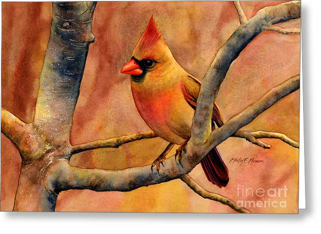 Female Northern Cardinal Greeting Cards - Northern Cardinal II Greeting Card by Hailey E Herrera
