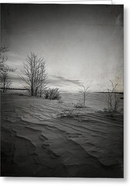 Kim Klassen Texture Greeting Cards - Northern Desert Greeting Card by Dustin Abbott