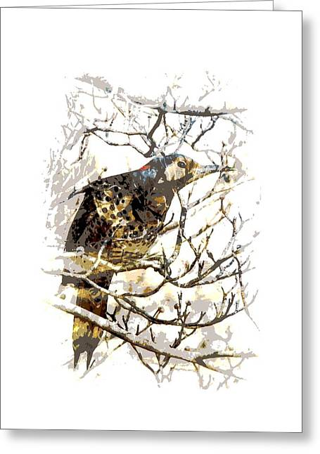 Yellow Hammer Greeting Cards - Northern Flicker - 1004- 5X7 Greeting Card by Travis Truelove