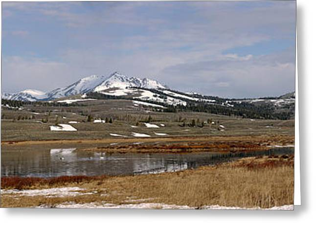 Willow Lake Greeting Cards - Northern Heights Greeting Card by Sandy Sisti