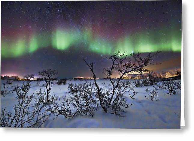 Nikkor Greeting Cards - Northern Lights - creative editing Greeting Card by Frank Olsen