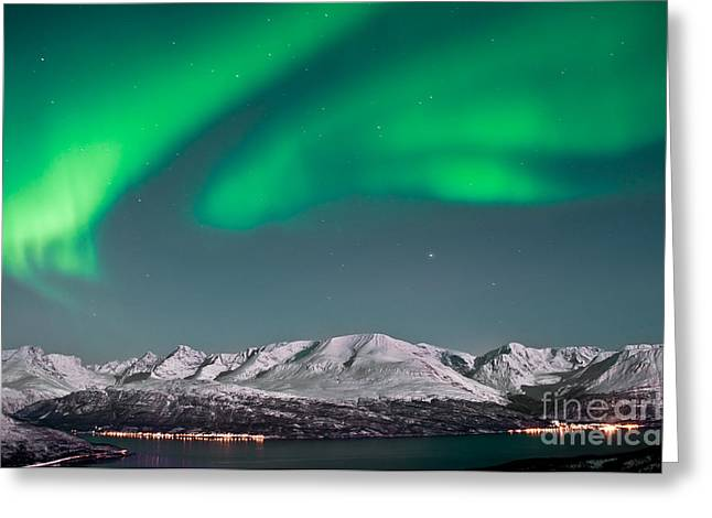 Pulsating Greeting Cards - Northern lights above fjords in Norway Greeting Card by Strahil Dimitrov