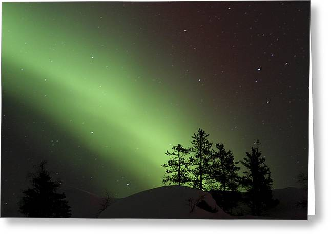 Jul08 Greeting Cards - Northern Lights Disappear Greeting Card by Dave Brosha