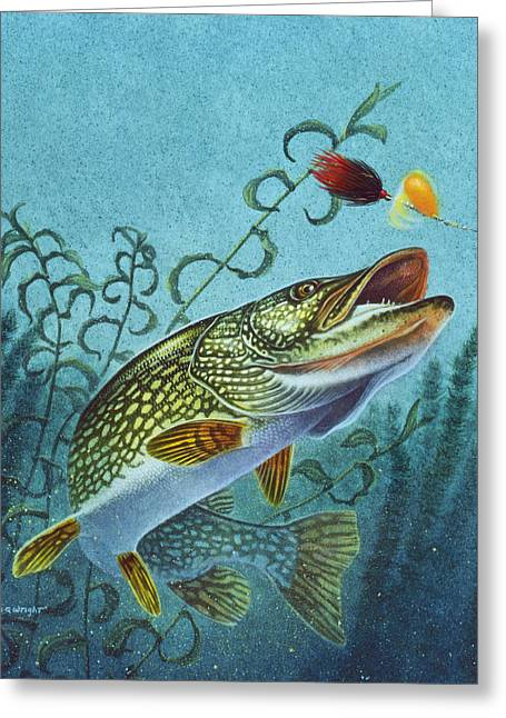 Northern Pike Spinner Bait Greeting Card by Jon Q Wright
