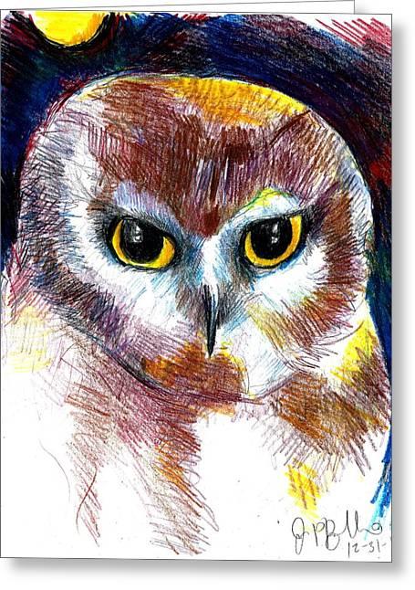 Saw Drawings Greeting Cards - Northern Saw Whet Owl  Greeting Card by Jon Baldwin  Art