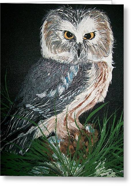 Saw Greeting Cards - Northern Saw-whet Owl Greeting Card by Sharon Duguay