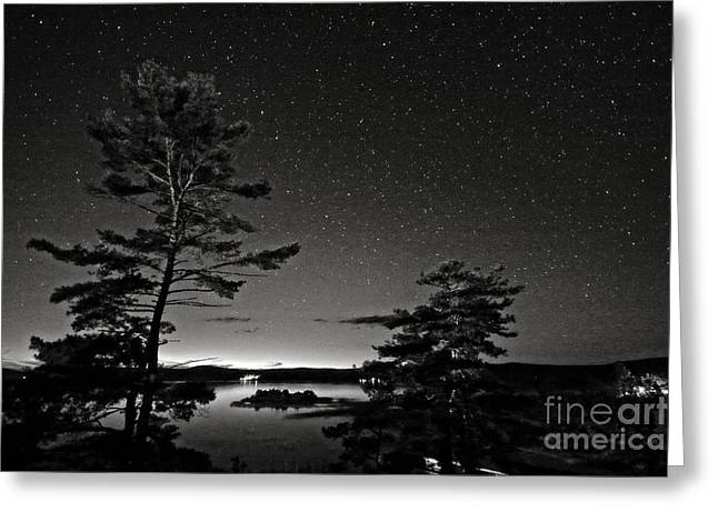 Ursa Minor Greeting Cards - Northern Starry Sky Black White Greeting Card by Charline Xia