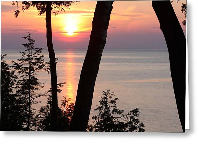 Northern Sunset Greeting Card by Sarah Vandenbusch