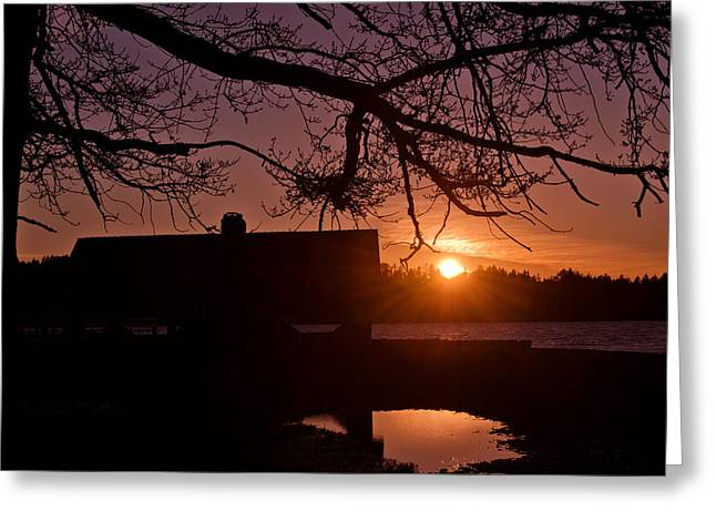 Steilacoom Greeting Cards - Northwest Sunset Greeting Card by Brandi Johnson