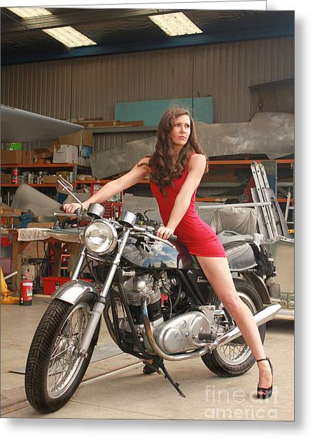 Second Lady Greeting Cards - Norton Commando 961 Greeting Card by Gee Lyon