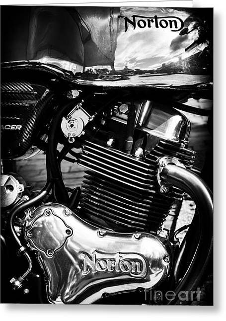Racing Bike Greeting Cards - Norton Domiracer Greeting Card by Tim Gainey