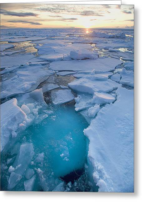 Coldly Greeting Cards - Norway, Svalbard, Longyearbyen, Arctic Greeting Card by Tips Images