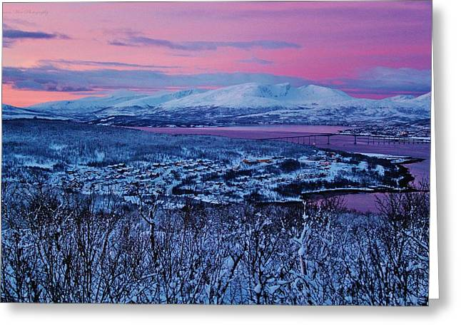 Norwegian Sunset Greeting Cards - Norwegian Arctic Twilight Greeting Card by David Broome