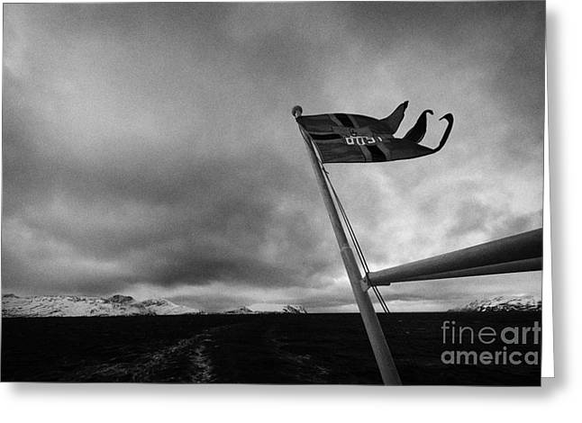 Postal Greeting Cards - Norwegian Post Postal Flag On A Ship Carrying Mail On A Cold Overcast Day At Sea Norway Europe Greeting Card by Joe Fox
