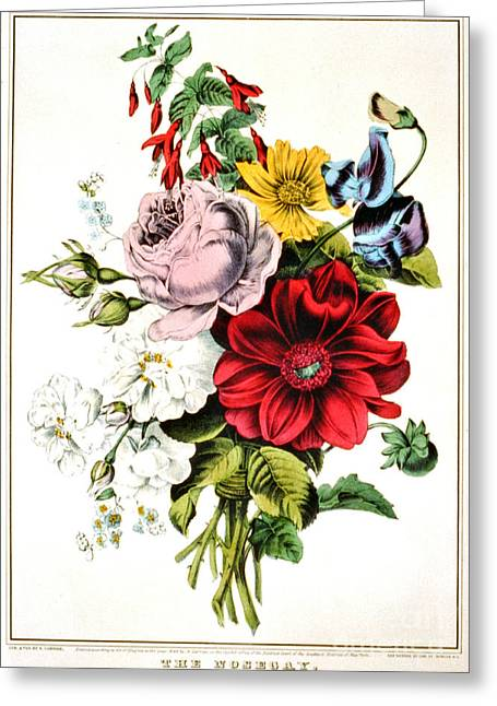 Nosegay 1848 Greeting Card by Padre Art