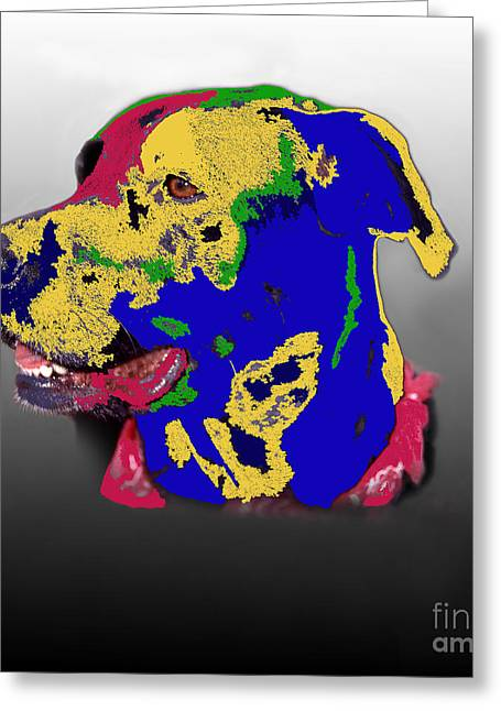 Abstract Digital Photographs Greeting Cards - Not A Black Lab Greeting Card by Skip Willits