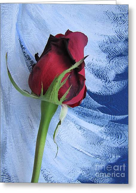 Enhanced Mixed Media Greeting Cards - Not Just Another Rose photograph art Greeting Card by Adri Turner