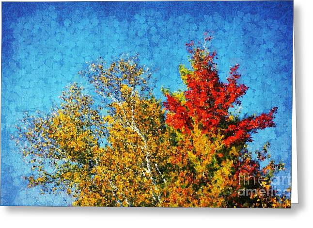 Blue Red Trees Greeting Cards - Not Only Some Other Autumn Trees - 09 Greeting Card by Variance Collections