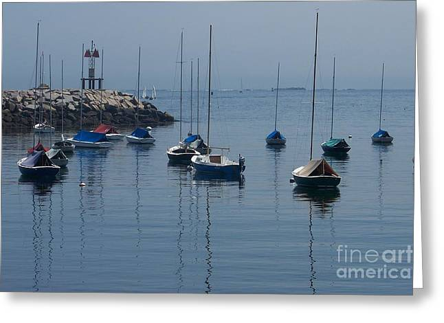 Seacape Greeting Cards - Sailboats  Greeting Card by Eunice Miller