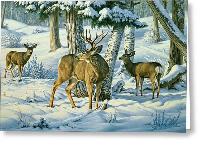 Mules Greeting Cards - Not This Year - Mule Deer Greeting Card by Paul Krapf