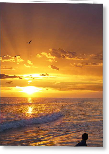 Sunrise On Beach Greeting Cards - Not Yet - Sunset Art By Sharon Cummings Greeting Card by Sharon Cummings