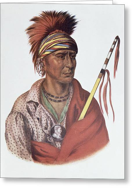 Mohicans Greeting Cards - Notchimine Or No Heart, An Iowa Chief, 1837, Illustration From The Indian Tribes Of North America Greeting Card by Charles Bird King