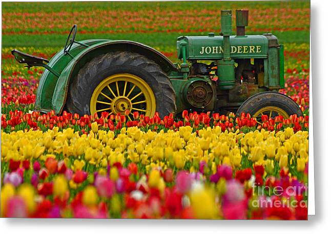 Boren Greeting Cards - Nothing Runs Like A Deere Greeting Card by Nick  Boren