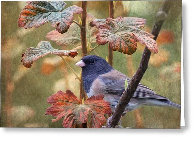 Bush Wildlife Greeting Cards - November Greeting Card by Angie Vogel