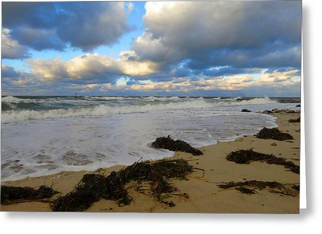 Harbor Sesuit Harbor Greeting Cards - November Clouds Greeting Card by Dianne Cowen