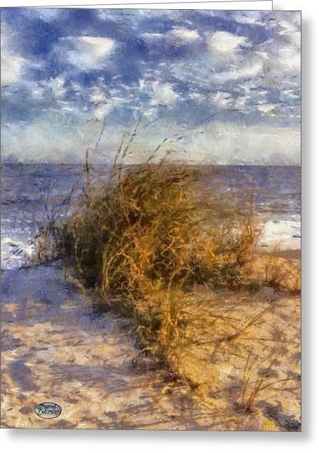 Beach Themed Art Greeting Cards - November Dune Grass Greeting Card by Daniel Eskridge
