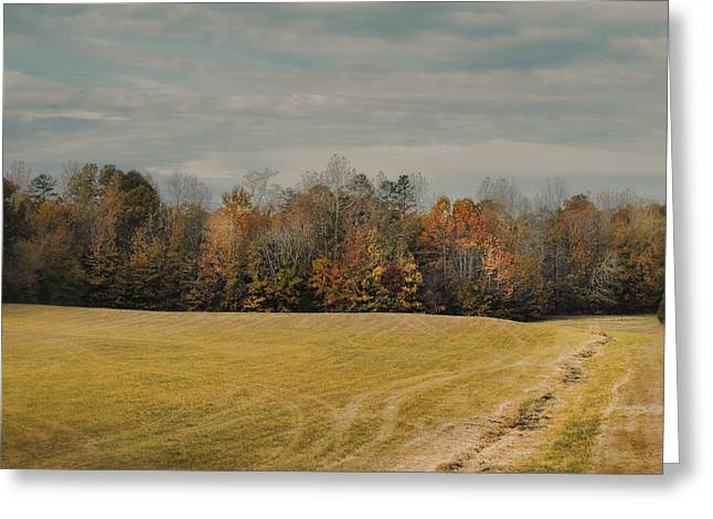 Fall Scenes Greeting Cards - November Fields - Autumn Landscape Greeting Card by Jai Johnson