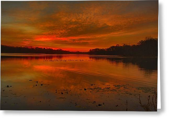 Indiana Autumn Greeting Cards - November Morning Greeting Card by Michael J Samuels