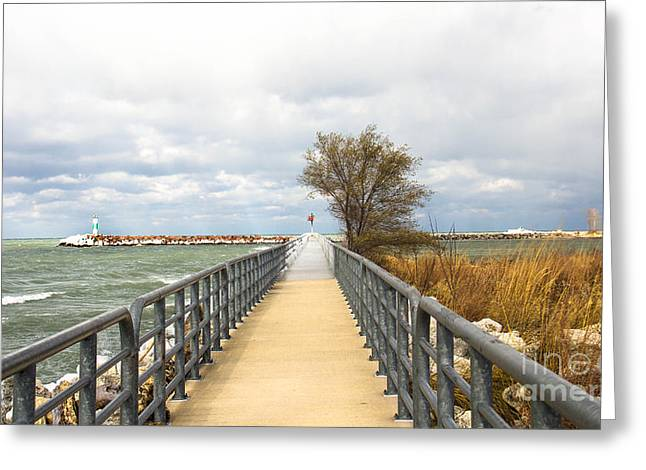 Indiana Autumn Greeting Cards - November on the riverwalk Greeting Card by Lynne Dohner