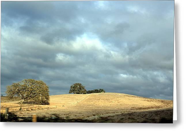 November Framed Prints Greeting Cards - November Sky and Oak Trees Greeting Card by Ron McMath